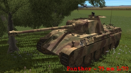 Panther Combat Mission