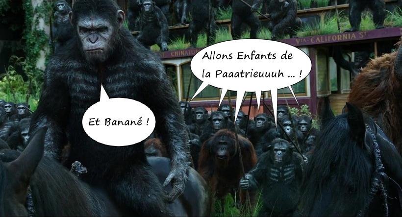 Combat Mission Gothic Line Surrender Monkeys